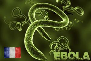 Comprendre le virus Ebola et comment l'eviter
